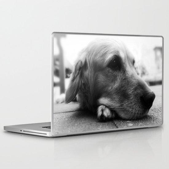 Blue Dog Laptop & iPad Skin