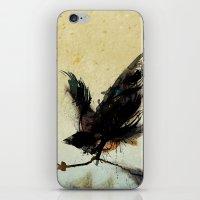 Sweet Bird iPhone & iPod Skin