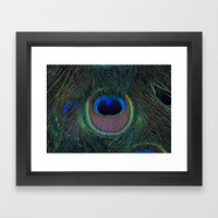 Peacock feathers Framed Art Print