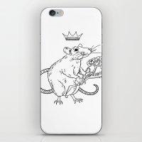 Rat King iPhone & iPod Skin