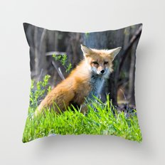 I Am The Fox. Who Are Yo… Throw Pillow