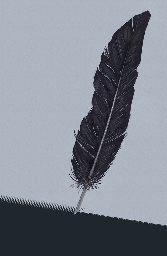 Feathered Edge. Canvas Print