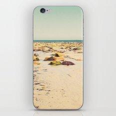 Rocky Beach iPhone & iPod Skin