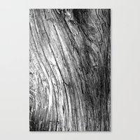 Wood Waves Canvas Print