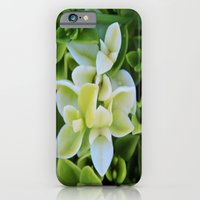 iPhone Cases featuring New Life by Brown Eyed Lady