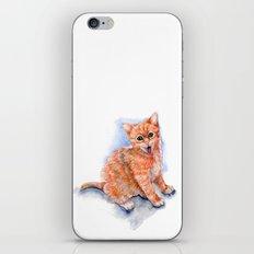 Happy Orange Kitten iPhone & iPod Skin