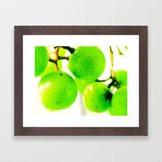 Grapes II Framed Art Print