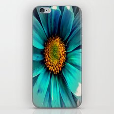 It All Fades Away iPhone & iPod Skin