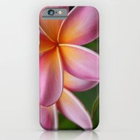 Places of the Heart iPhone 6 Slim Case