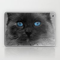 CATTURE Laptop & iPad Skin