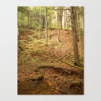 Life Is Uphill Canvas Print
