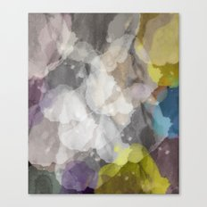 Abstract XII Canvas Print