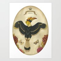 Great Hornbill Art Print