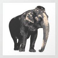 Elijah the Elephant Art Print