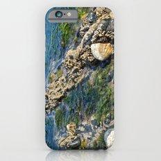 Rock pool iPhone 6s Slim Case
