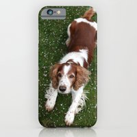 Welsh Springer Spaniel -… iPhone 6 Slim Case