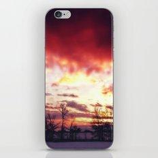 Arctic Warmpth iPhone & iPod Skin