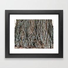 Armidale 4148 Framed Art Print
