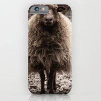 iPhone & iPod Case featuring Sheep Stare by Roger Wedegis