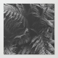 Colorless Fern Canvas Print