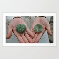 Sea Urchins in Hands Art Print