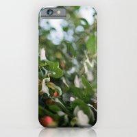 Crab Apple Tree iPhone 6 Slim Case