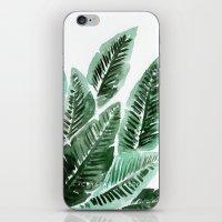 Paradise Leaves iPhone & iPod Skin