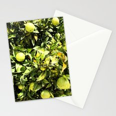 Oranges In Production Stationery Cards