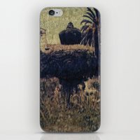 Mission Fountain iPhone & iPod Skin