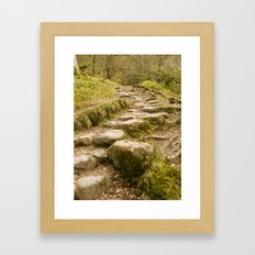Stone path Framed Art Print