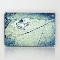Hidden Treasures Laptop & iPad Skin