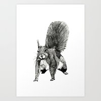 Pesky Squirrel Art Print