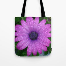 Purple African Daisy with Raindrops Tote Bag