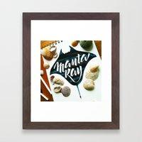Manta ray Framed Art Print