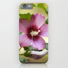 Hardy Hibiscus iPhone 6 Slim Case