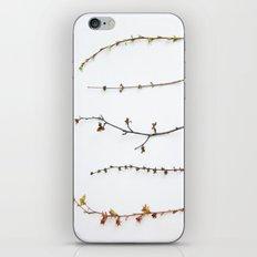 Indoor Garden iPhone & iPod Skin