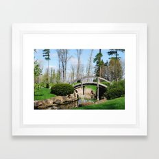 Across the stream Framed Art Print