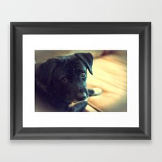 Mosby Framed Art Print
