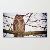 The Disgruntled Owl  (20… Canvas Print