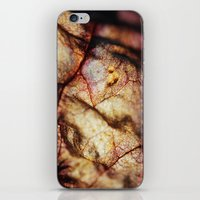 Colorful Decay iPhone & iPod Skin