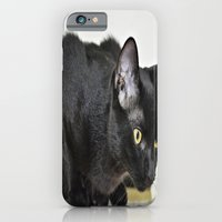iPhone & iPod Case featuring Beautiful Black Cat by Celso Azevedo