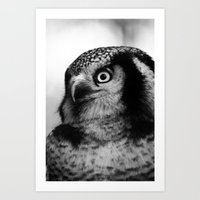 Owl Series No.4 Art Print