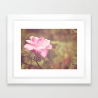 A Rose By Any Other Name... Framed Art Print