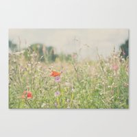 Wild Flowers ...  Canvas Print