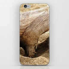 Natural forms iPhone & iPod Skin