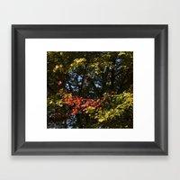 The Leaves Were Smiling … Framed Art Print