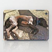Sleepy Alaska iPad Case