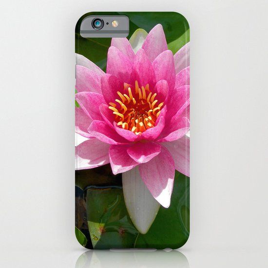 water lily VI iPhone & iPod Case