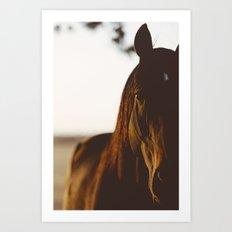 Copper Horse Art Print
