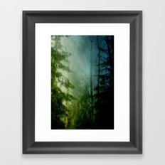 Blue pines Framed Art Print
